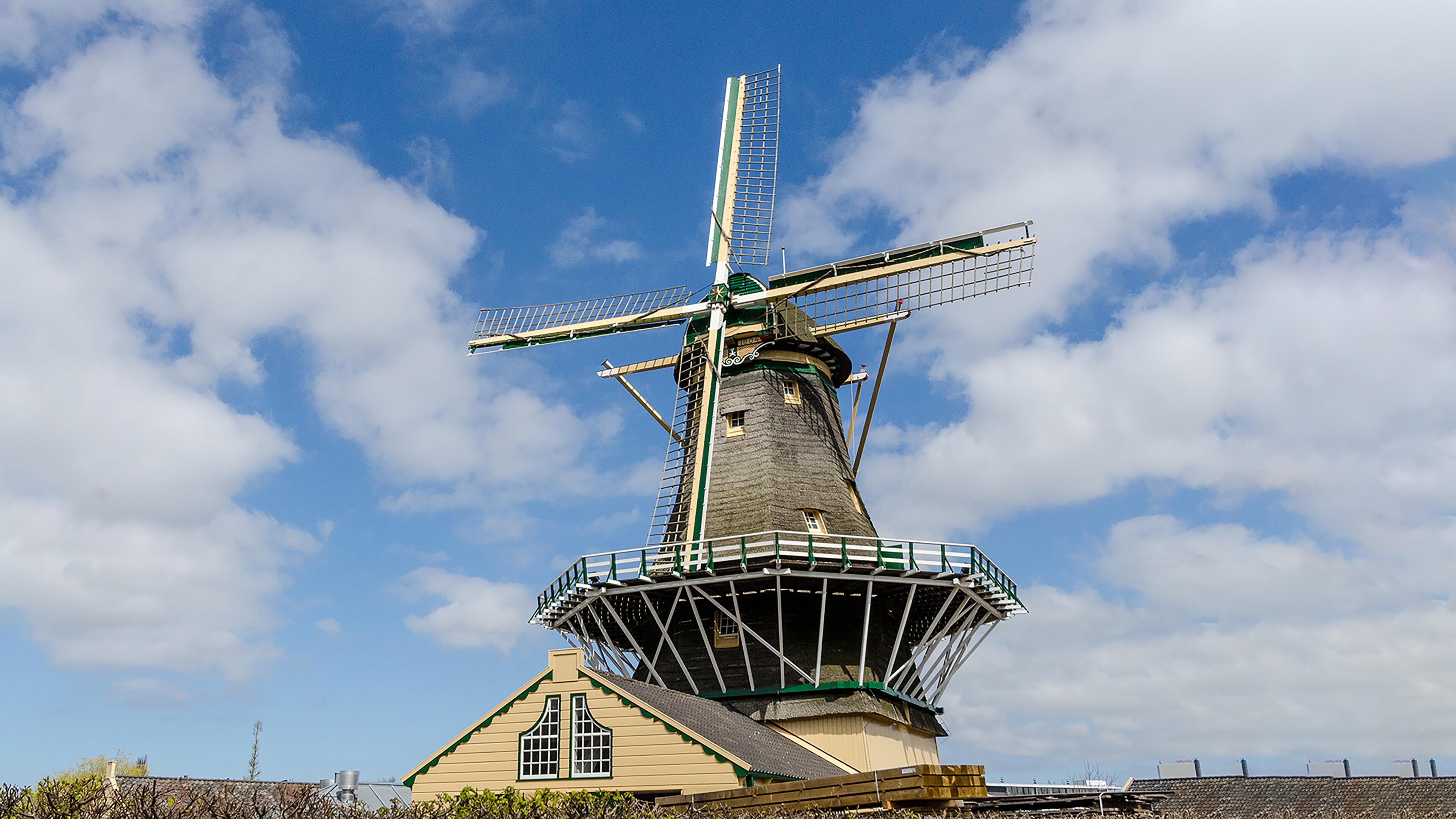 d' Heesterboom Leiden